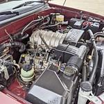 Maroon Tundra 37k jjjjjj