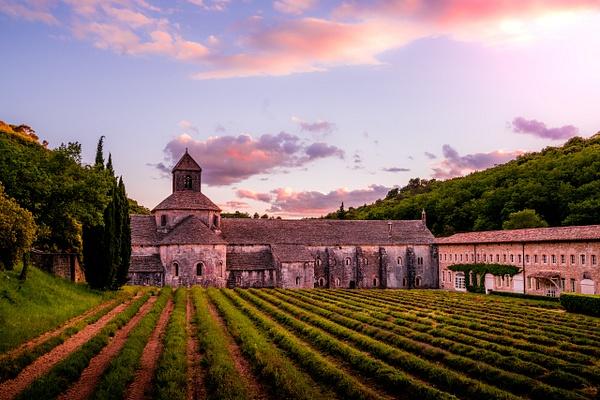 Abbaye de Senanque by Serge Ramelli