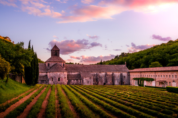 Abbaye de Senanque - Landscapes by Serge Ramelli