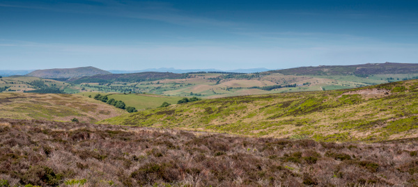 Long Mynd 2020-1 - Shropshire Countryside - Stephen Kelvin Hope Photography