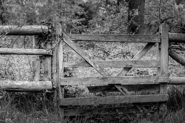 Walk 18-4 - Shropshire Countryside - Stephen Kelvin Hope Photography
