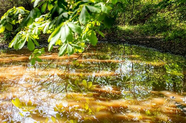 Walk 13-20 - Shropshire Countryside - Stephen Kelvin Hope Photography
