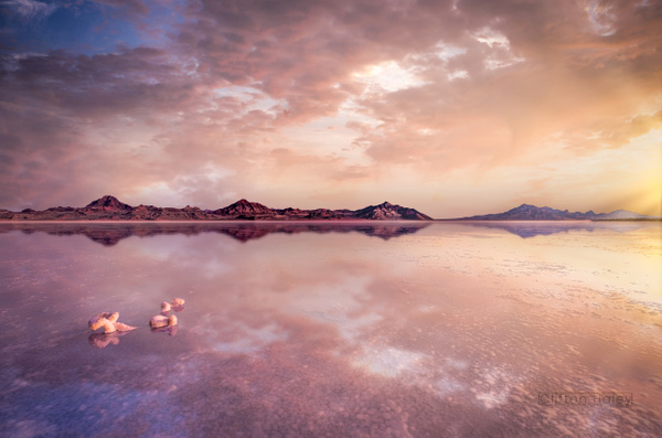 Bonneville Salt Flats - Home - Clifton Haley Photography