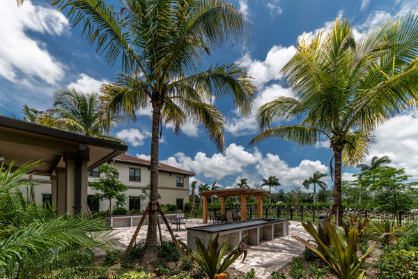 Royal Palm (102) - Corporate Portfolio - Clifton Haley Photography