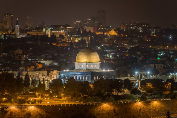 Israel by Clifton Haley