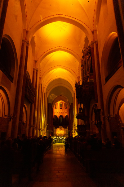 Roskilde Cathedral 18 - Roskilde Domkirke - Johan Clausen Photography