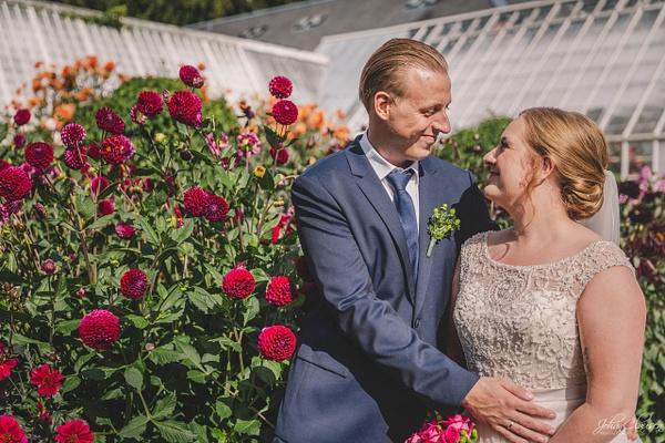 Wedding 2019 - Weddings - Johan Clausen Photography