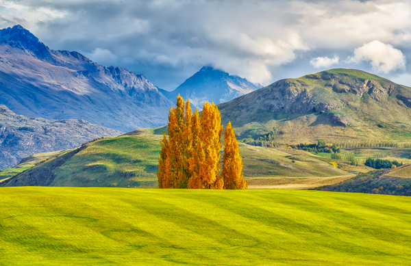 Fall Golf course - New Zealand - Kirit Vora Photography