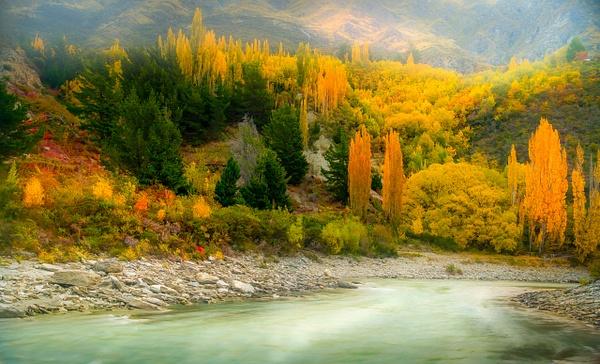 River in New Zealand - New Zealand - Kirit Vora Photography
