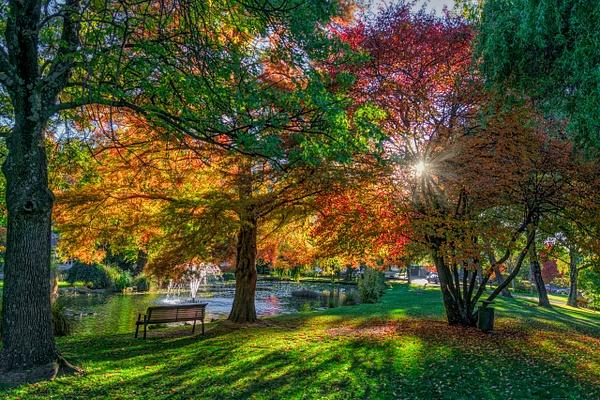 Queenstown Garden - New Zealand - Kirit Vora Photography