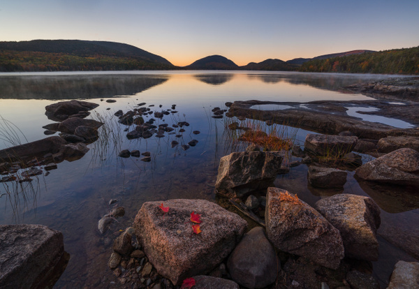 A touch of color - Maine Acadia Park - Kirit Vora Photography