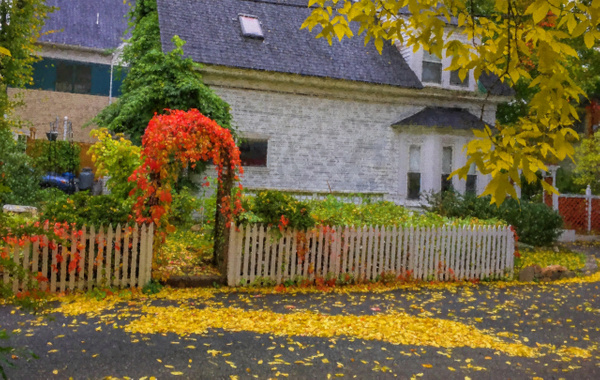 IMG_2579-Edit - Maine Acadia Park - Kirit Vora Photography