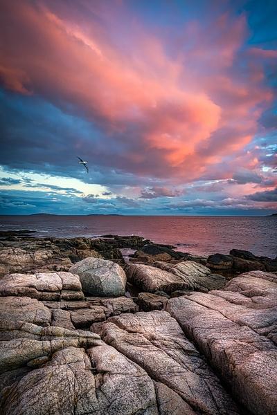 Pink sky Maine - Maine Acadia Park - Kirit Vora Photography