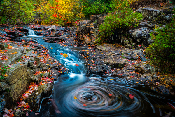 Magic whirl of fall - Maine Acadia Park - Kirit Vora Photography
