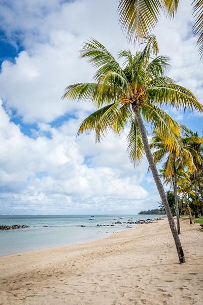 Mauritius-White-Beach by ReiterPhotography