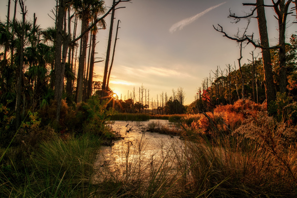 _C2A2317-HDR-Edit-Edit - Landscapes - Grant Augustine Photography