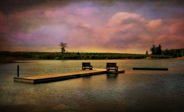 NY Pond, Version No. 1 - Pond, NY - Joanne Seador Photography