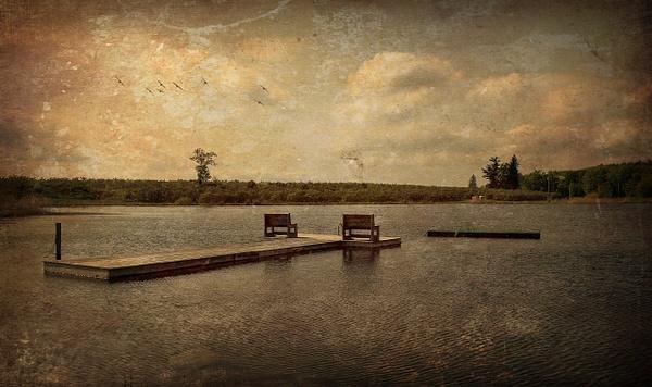 NY Pond, Version No. 3 - Pond, NY - Joanne Seador Photography