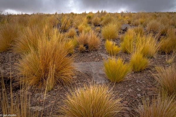 _DSC0146 - Bolivia uyumi saltlake, la paz, madidi and Tiwanaku