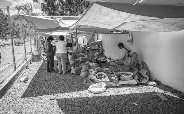 _DSC0169 - Bolivia uyumi saltlake, la paz, madidi and Tiwanaku
