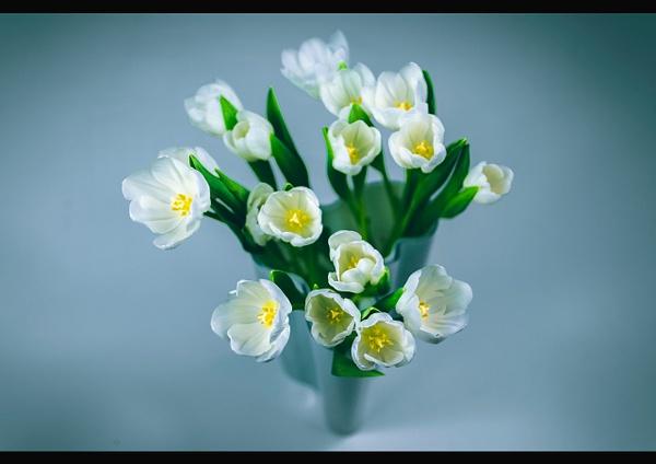 buket of flower - flower of all kind and leaves molin photografy