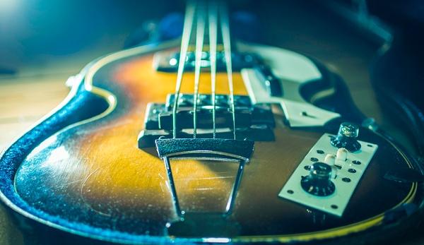 sideligt bass - Close-ups - Molin Photos
