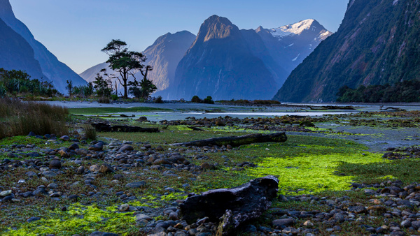 New Zealand by Andreas Maier