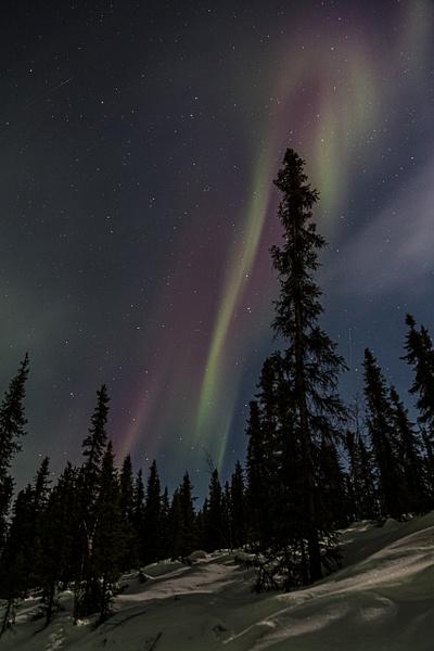 aurora borealis by Andreas Maier