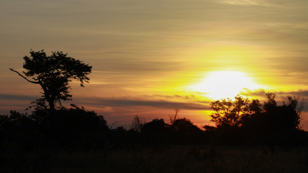 Botswana by Andreas Maier