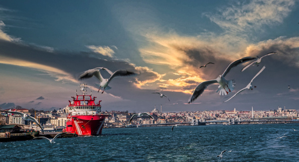 The Bosphorus, Istanbul - Landscapes & Cityscapes - Arian Shkaki Photography