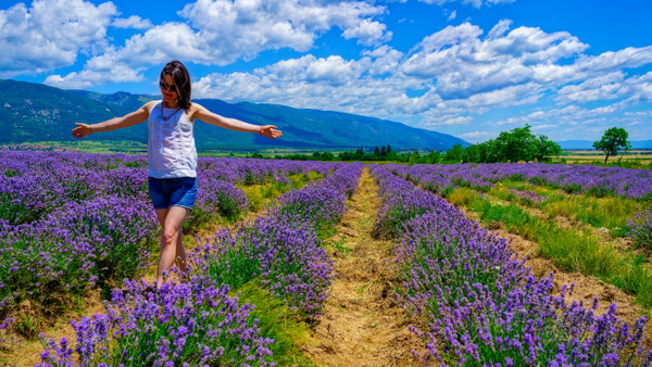 Lavender Fields - People - Arian Shkaki Photography