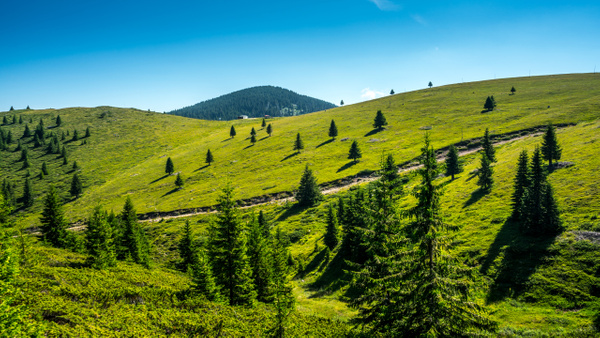 Rhodope Mountains, Bulgaria by Arian Shkaki