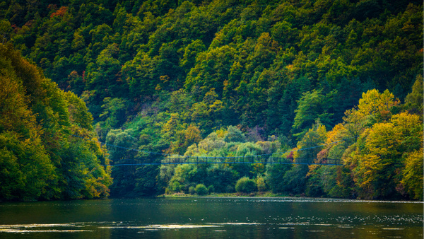 Early Autumn Colours - United Colours of Bulgaria - Arian Shkaki Photography