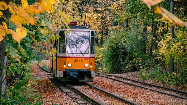Streetcar Named Desire - United Colours of Bulgaria - Arian Shkaki Photography