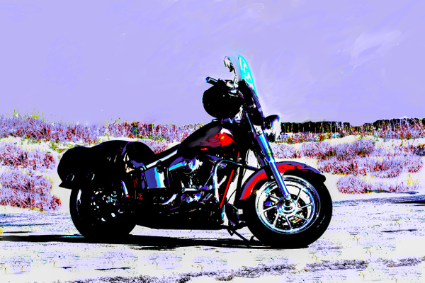 Wanda's Harley - Motorcycle - Jim Krueger Photography