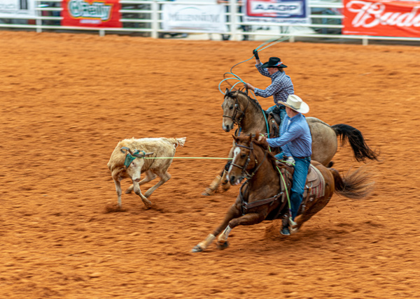 DSC03576 - Rodeo - Jim Krueger Photography