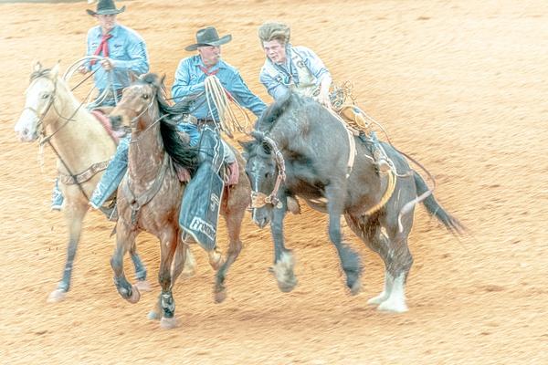 DSC03523 - Rodeo - Jim Krueger Photography