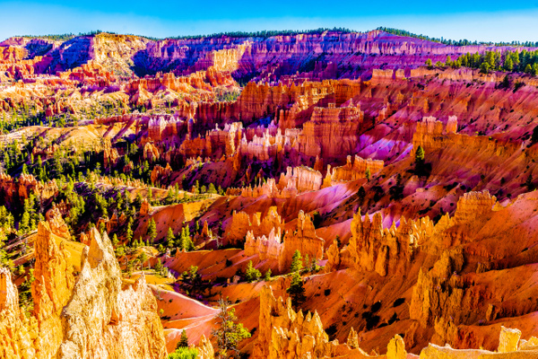Bryce Canyon - Landscape - Jim Krueger Photography