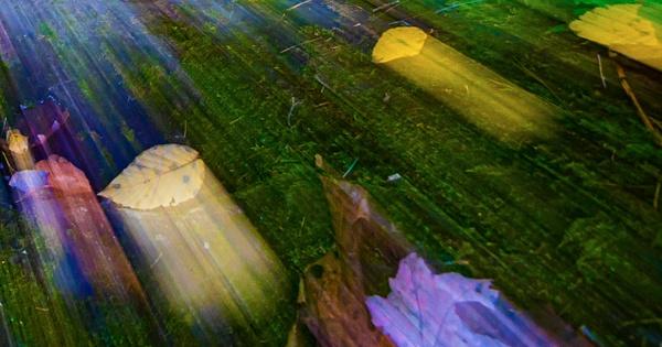 Screen Shot 2020-10-07 at 7.37.51 PM - Landscape - Jim Krueger Photography