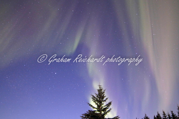 8-Aurora Borealis or Northern Lights taken at Chandlers farm, out from Fairbanks - Aurora - Graham Reichardt Photography