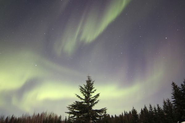 6-Aurora Borealis or Northern Lights taken at Chandlers farm, out from Fairbanks - Aurora - Graham Reichardt Photography