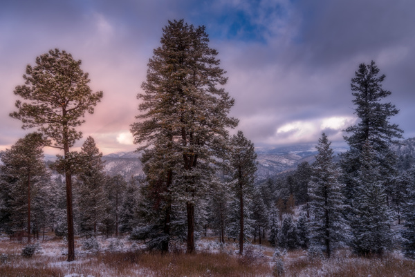 _KWS8450-Edit - Colorado - Korey Shumway Photography