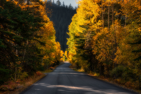 Autumn Road - Utah - Korey Shumway Photography