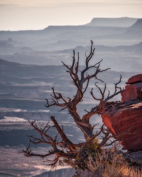 _DSC2252-Edit - Utah - Korey Shumway Photography