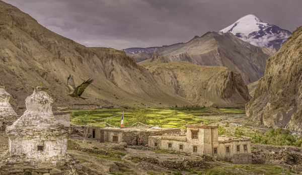 Ladakh -  Vallée de Markha