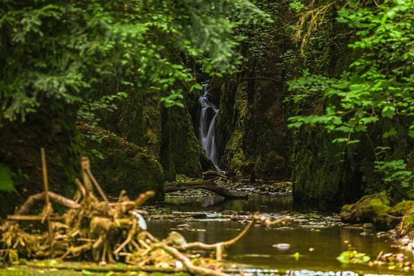 20200526-IMG_6106 - Alva Glen Waterfall - Heather Morrison Photography