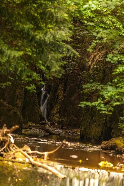 20200526-IMG_6097 - Alva Glen Waterfall - Heather Morrison Photography