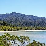 Cape Tribulation and Daintree Rainforest