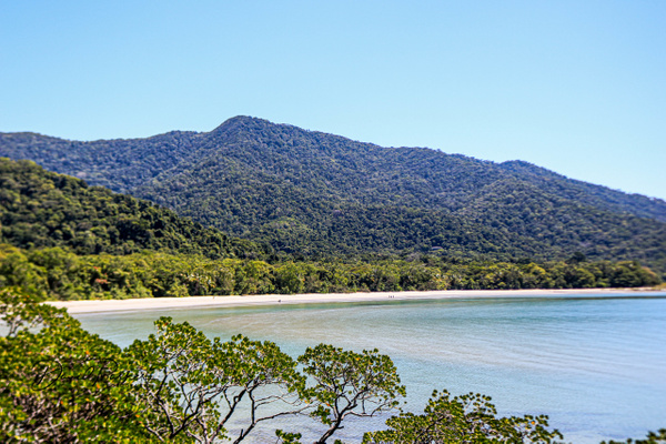 Cape Tribulation and Daintree Rainforest by...