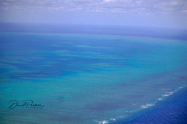 Great Barrier Reef by DavidParkerPhotography